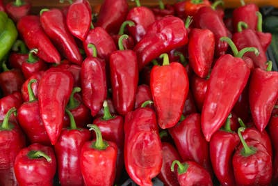 Depending on the type, peppers can take between 50 and 120 days to be ready for the harvesting. Normally, ripe bell peppers have a bright red coloration, but...