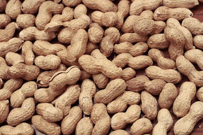 Strictly speaking, the peanut is not a nut at all, but a legume, and therefore has more in common with peas and beans than with nuts. Their strong...